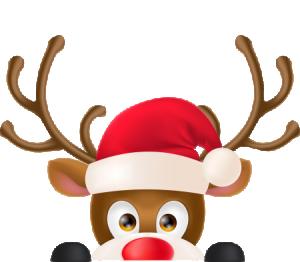Wicker Christmas Reindeer
